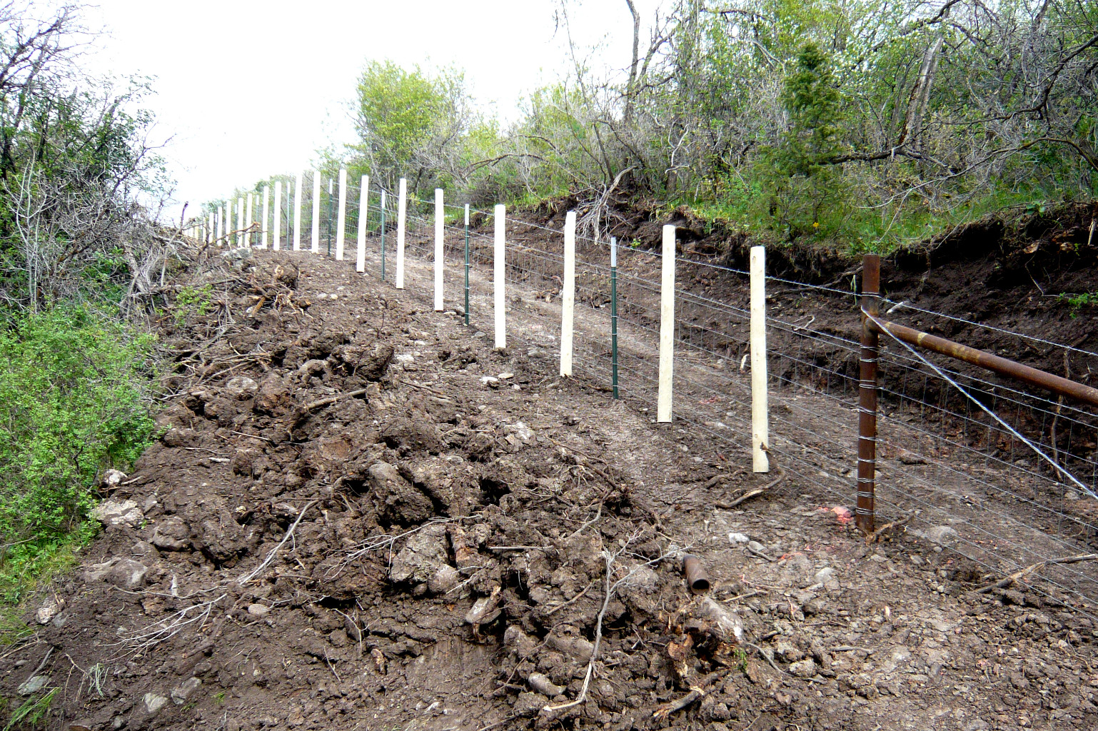 Singleton Fence Agriculturalfence