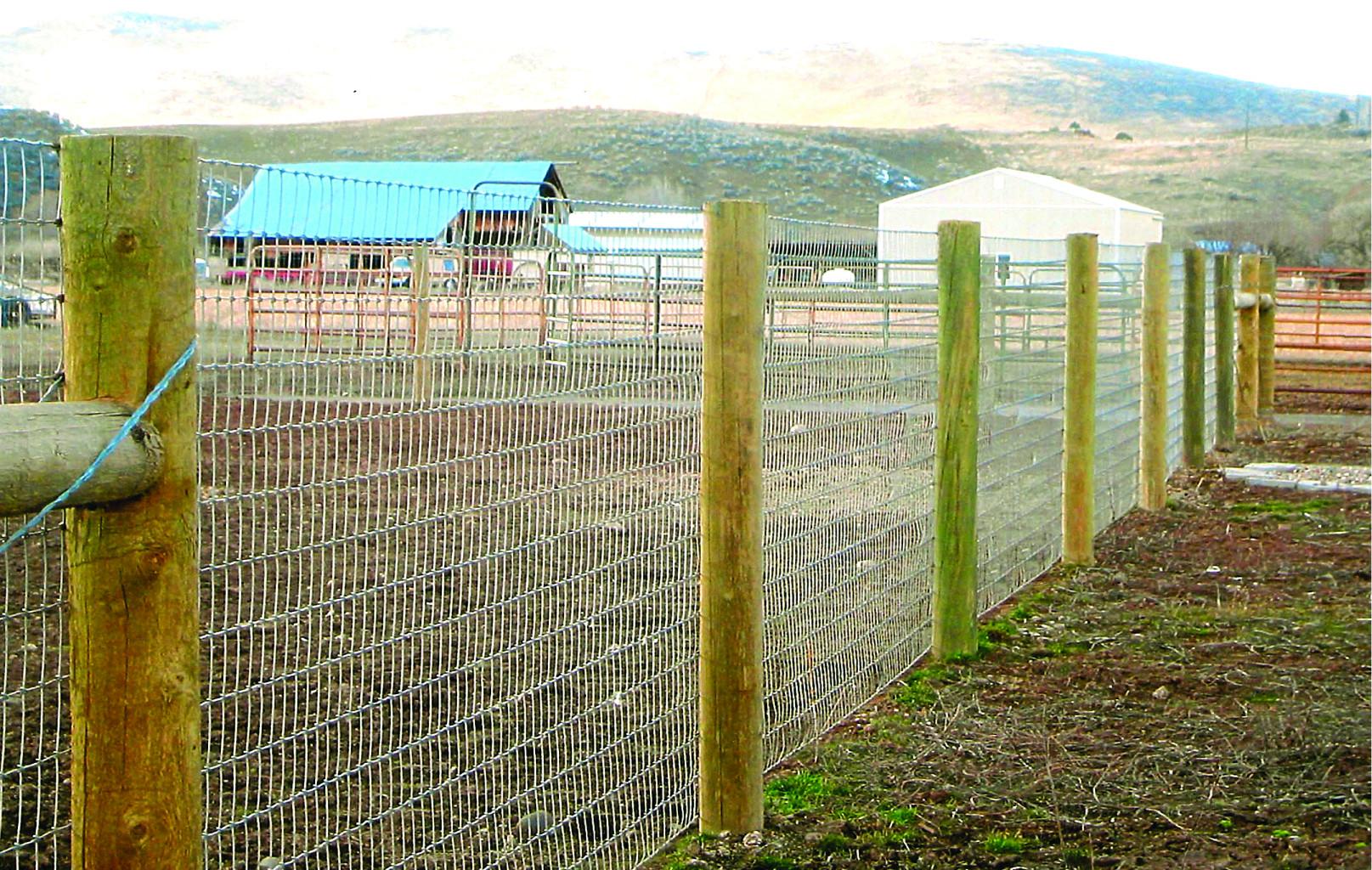 Singleton Fence : AgriculturalFence